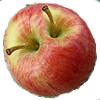 apple core duo