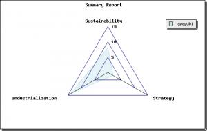 Spagobi Summary Report